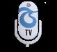 TS Tv